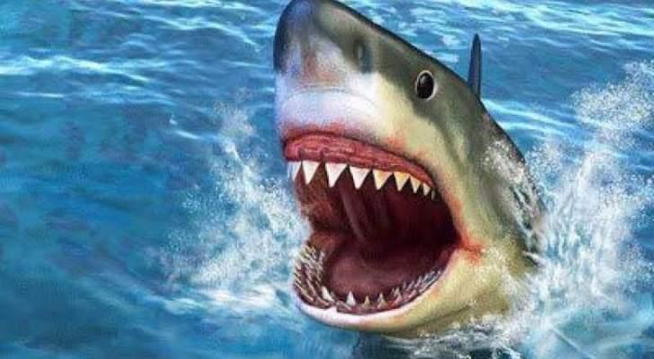 إصابة أحد الغواصين بإحدى قرى الساحل الشمالى اثر هجوم سمكة قرش
