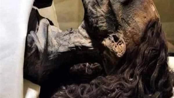 خلطة دهن البقر ٠٠ الكشف عن سر حفاظ مومياء الملكة تي على شعرها حتى اليوم