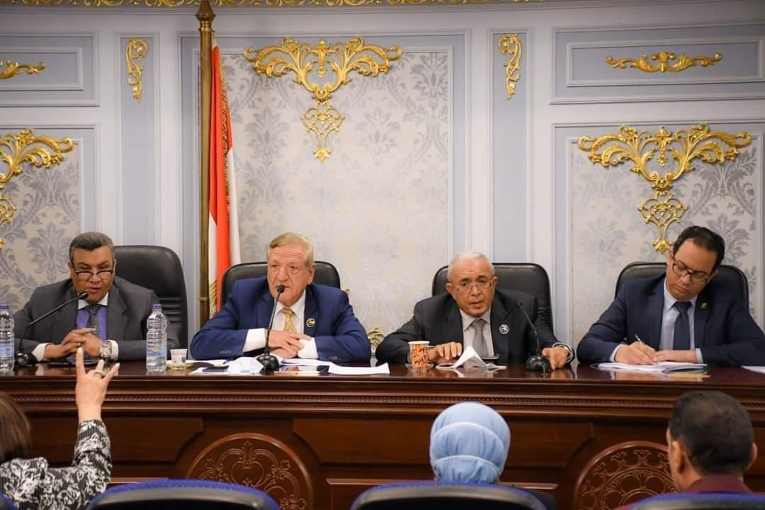 وزارة التخطيط والتنمية الاقتصادية تستعرض جهود تطبيق خطط وموازنات البرامج والأداء أمام لجنة الخطة والموازنة بمجلس النواب