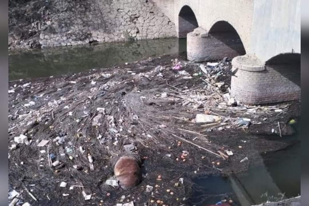 القمامة تُحاصر ترعة النعناعية فى «سمادون» بالمنوفية.. والأهالي: نحتاج لحل نهائي
