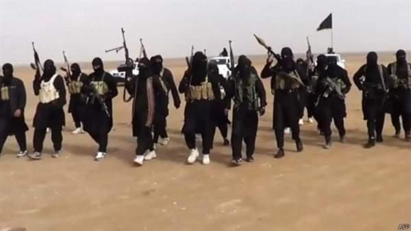 اسحق فرنسيس يفجر كارثة فى الوضع الراهن  «داعش» يستميت للعودة وإحياء وجوده
